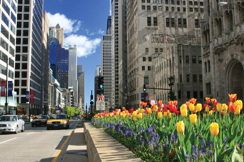 magnificent-mile-chicago